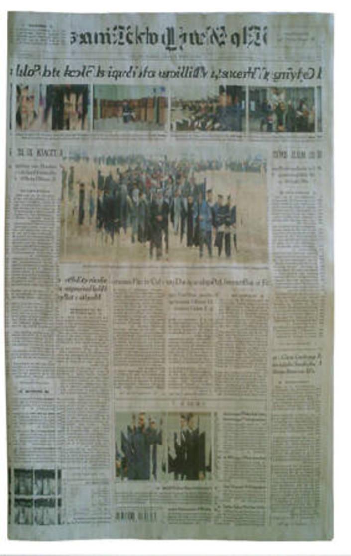 Shredded Newspaper (January 31, 2005)